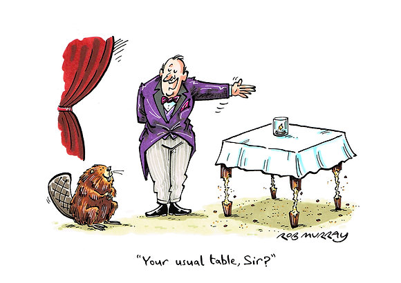 Beaver ('Your usual table, Sir?')
