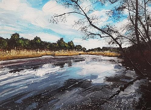 Across Black Pond