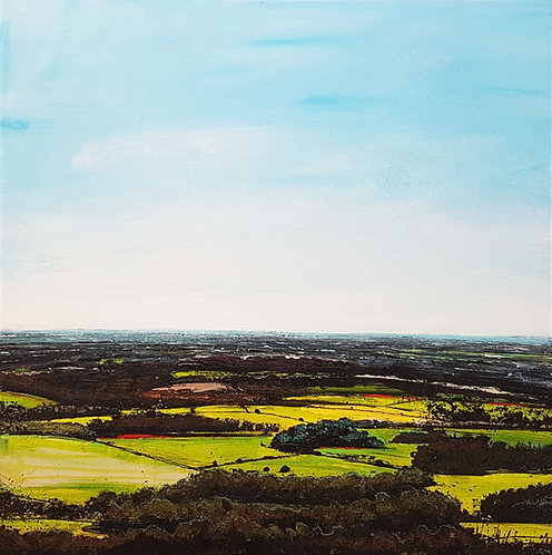 High Summer (South from Leith Hill)