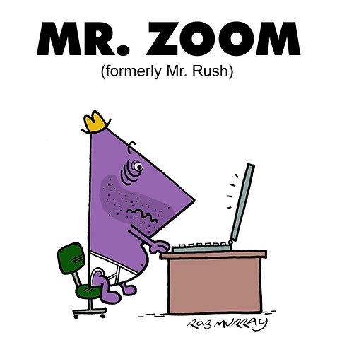Mr Zoom