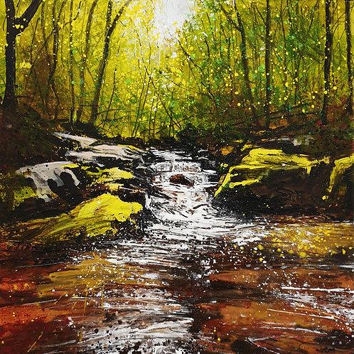 Facing the Falls (Autumn, Draynes Wood)