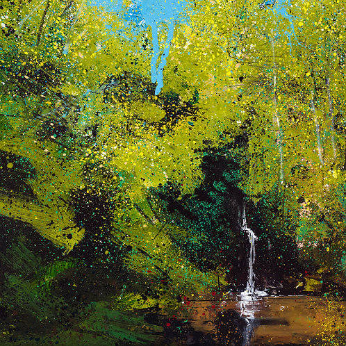 Secluded Falls (The Tillingbourne at Wotton)
