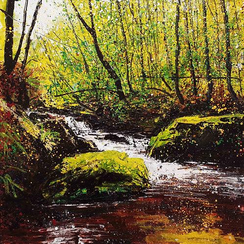 Golitha Falls, Draynes Wood