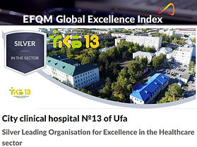 GKB13Ufa_EFQM Global Index.jpg