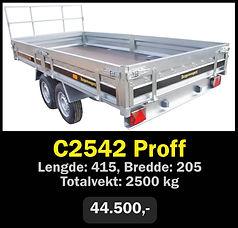 c2542.jpg