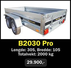 b2030.jpg