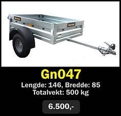 gn047.jpg
