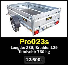 pro023s.jpg