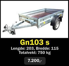 gn103 s.jpg