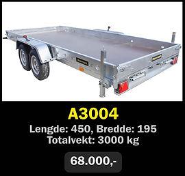 Norgeshengern A3004 BHT