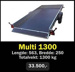 multi 1300.jpg