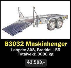 b3032.jpg