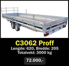 c3062.jpg