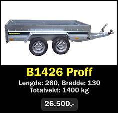 b1426.jpg