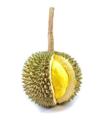 『高品質 長柄榴槤』泰國kanyao