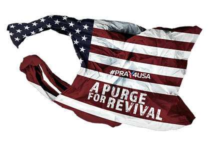 A PURGE FOR REVIVAL - USA.png