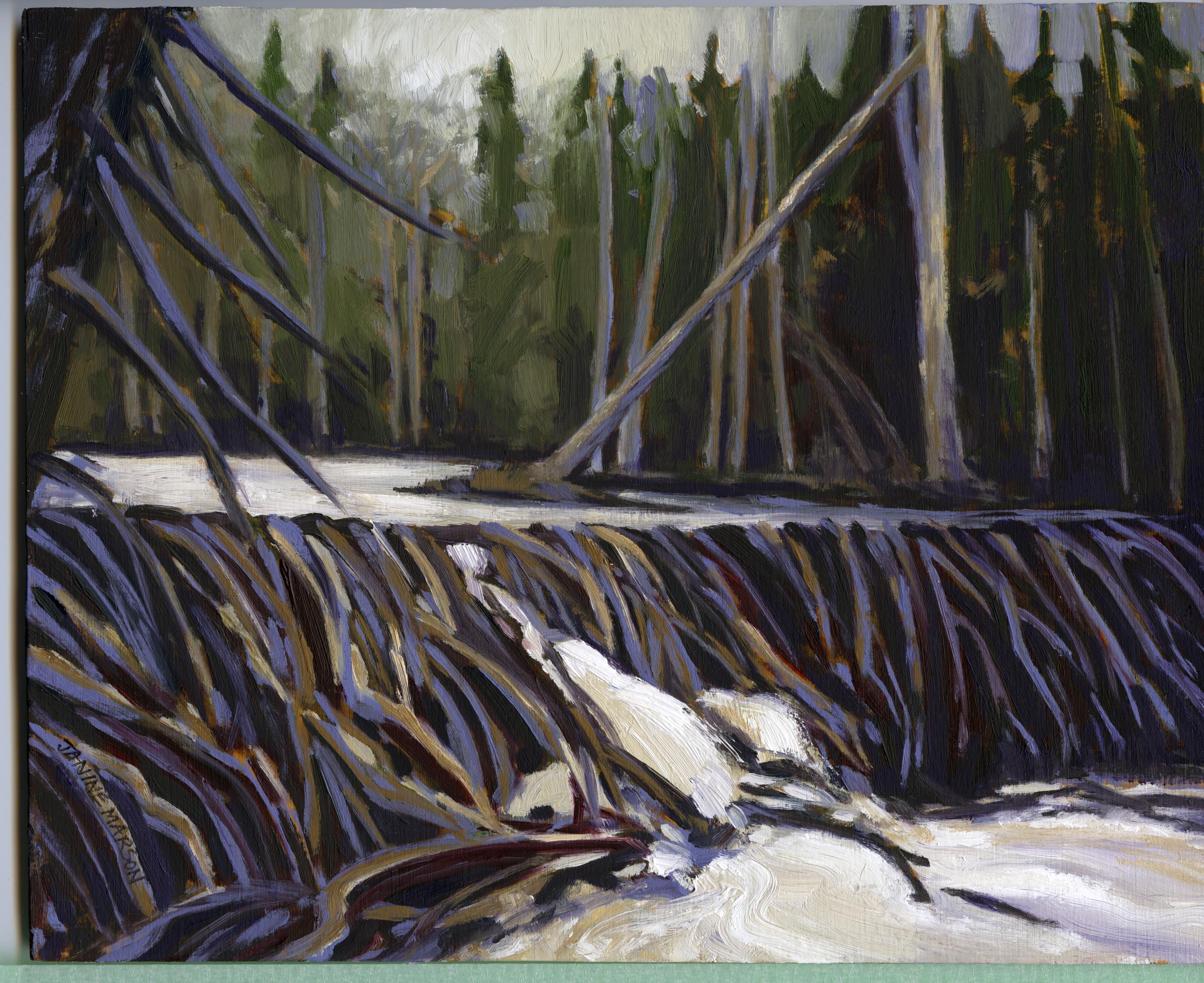 Board#9 Beaver dam-SOLD