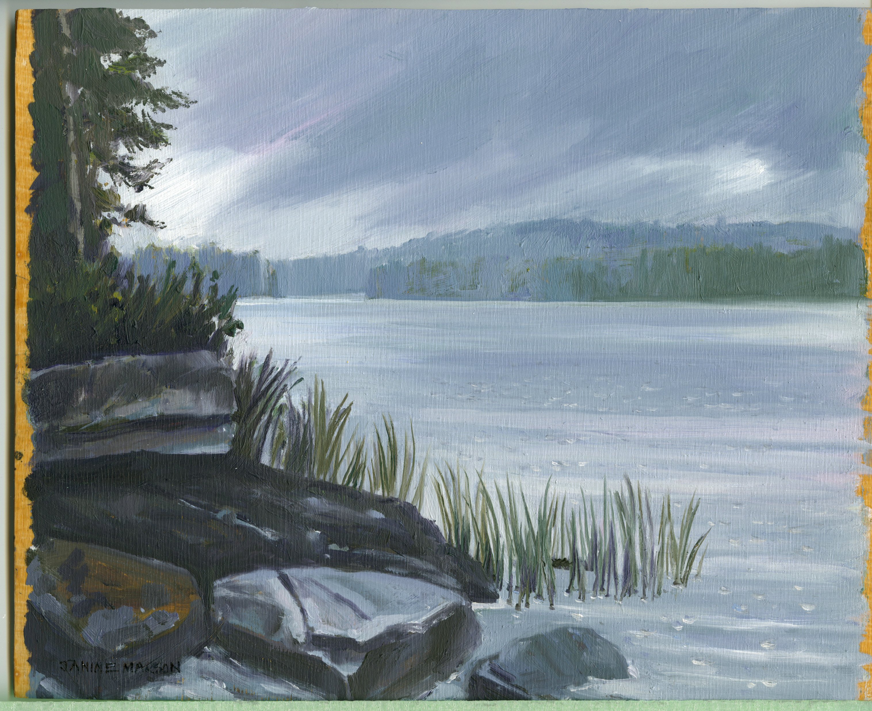 Bd#41Little Wapomeo in the rain-SOLD