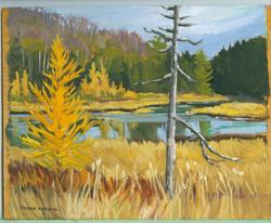 Board#83 Fall in the Marsh-SOLD