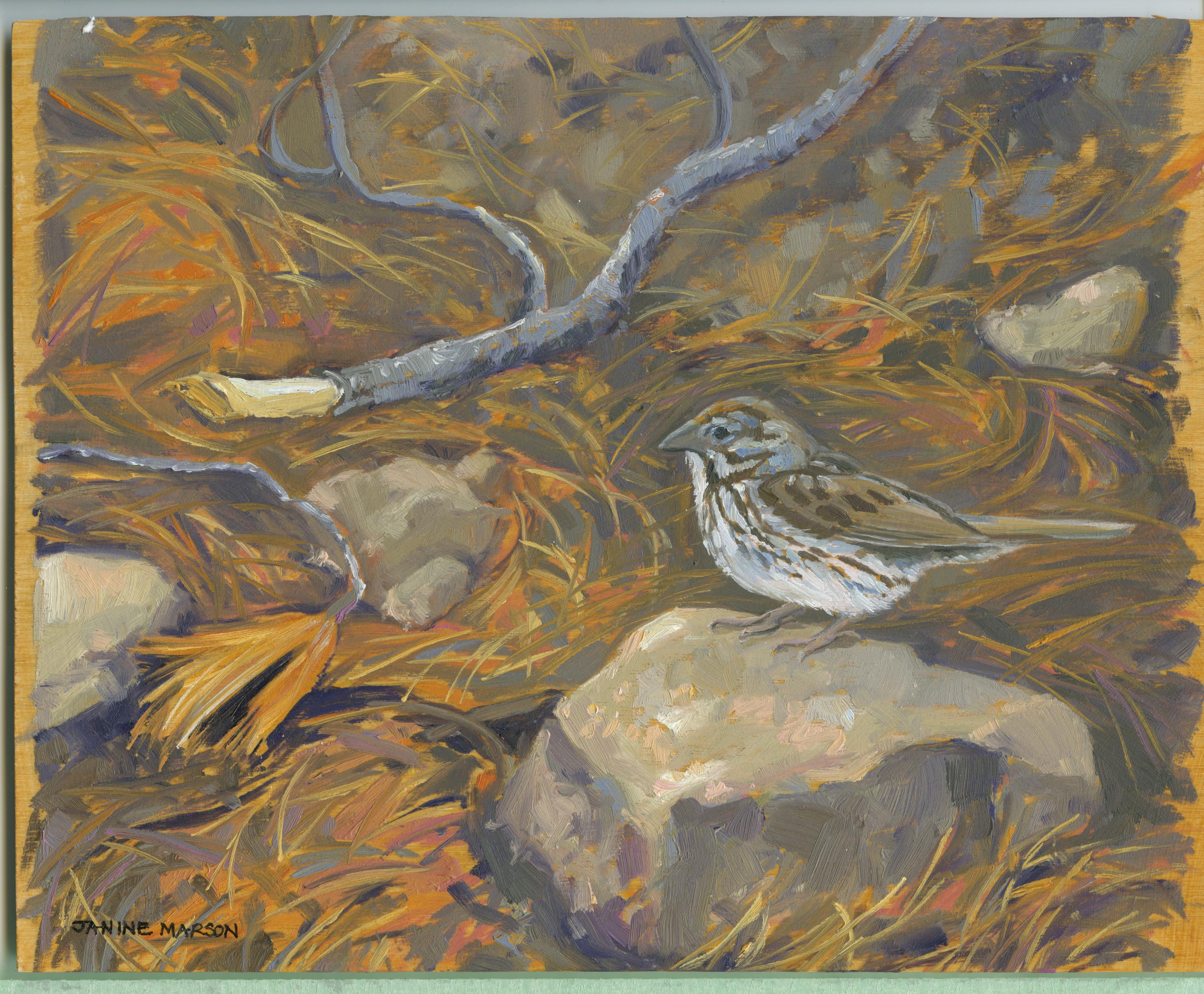 Board#98 Sparrow visit-SOLD