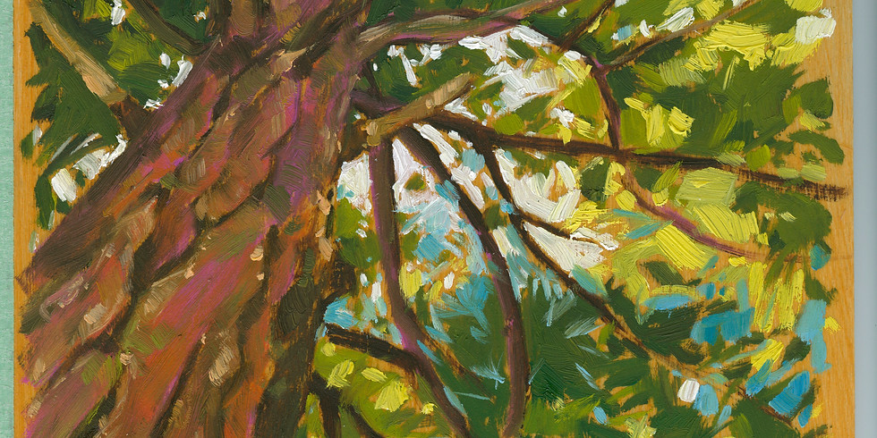 Art Show: Through Tom's Eyes a discovery of truth, light and colour. The Chapel Gallery 15 King Street, Bracebridge, ON