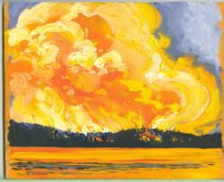 Board #43Fire at Cauchon lake-SOLD