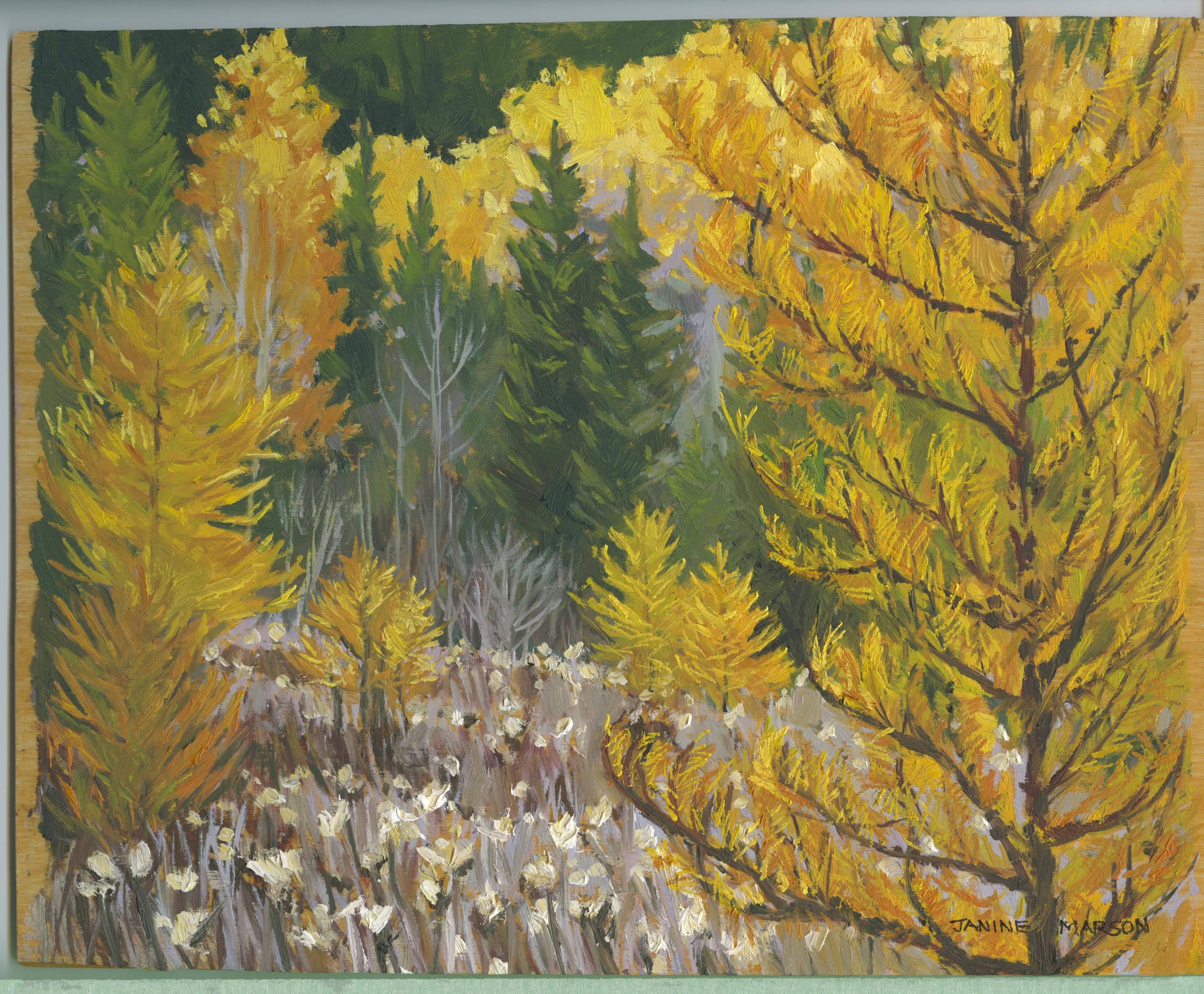 Board#82 Golden Tamaracks-SOLD