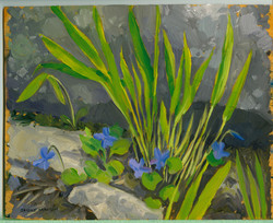 Board#38 Wooly blue violets-SOLD