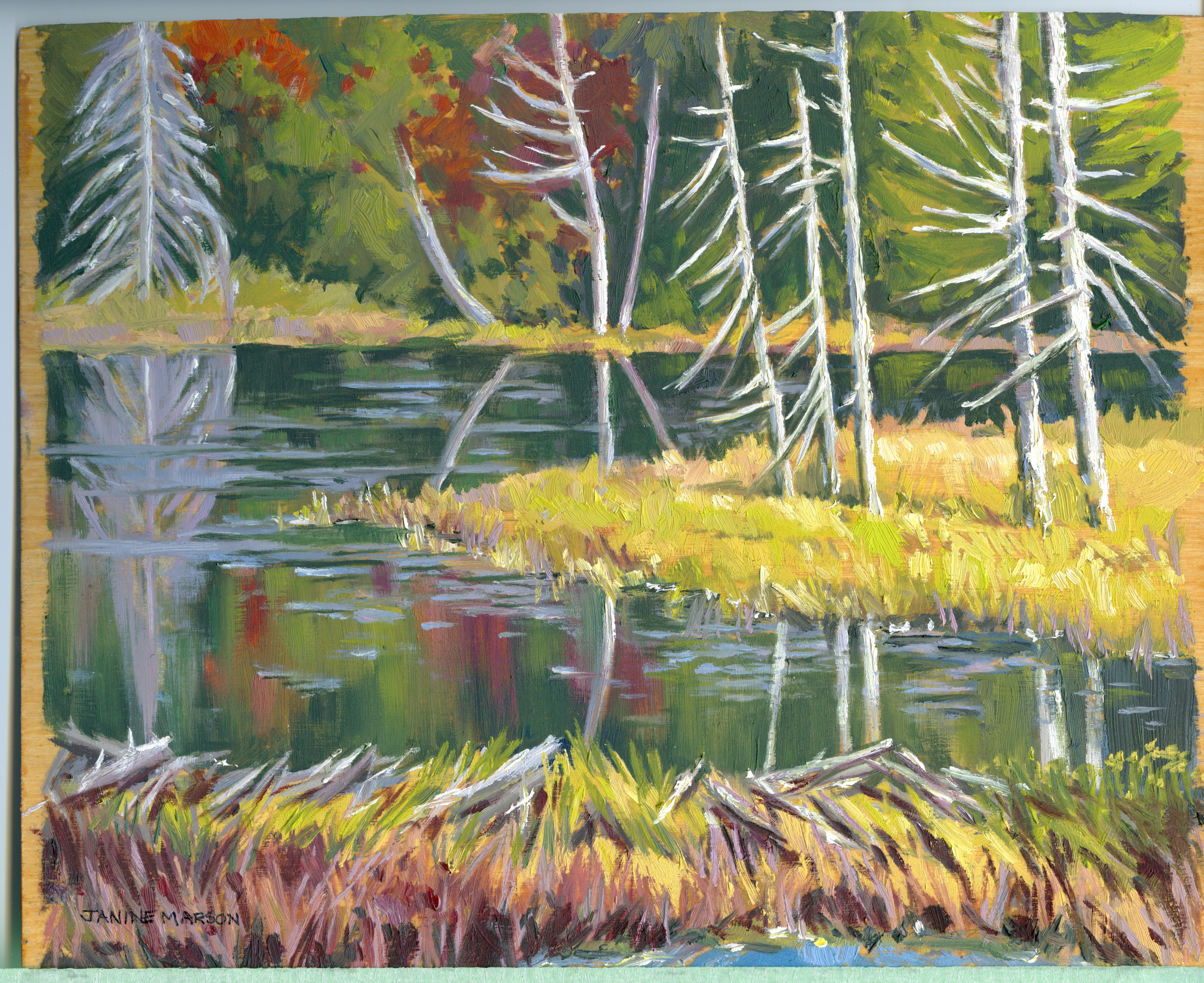 Bd#74 Morning on the marsh-SOLD