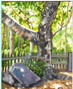 Board#3 Old birch tree-SOLD