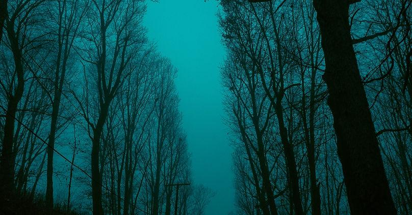 keagan-henman-TkgIhfxXvgo-unsplash.jpg