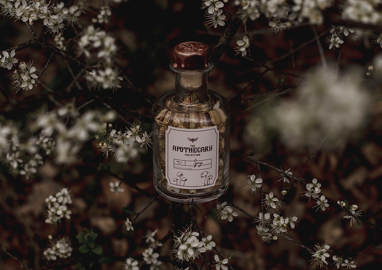 The Apothecary Collection Spring Wax Melt Bottle   Moth to a Flame