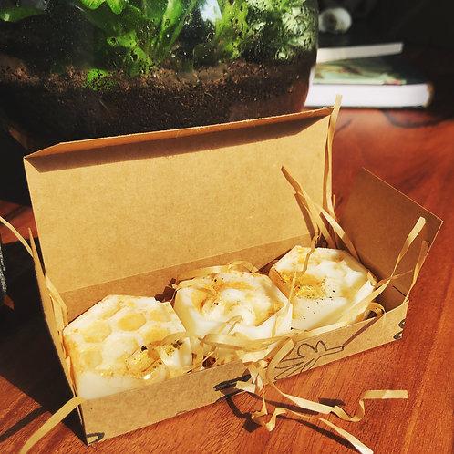 Autumn Vegan Wax Melts   Moth to a Flame