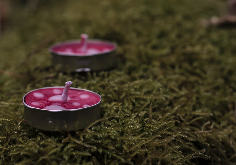 Mushroom Cup Tealights (set of 3)   Moth to a Flame