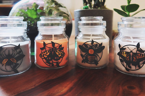 Insect Jar Candle | Moth to a Flame