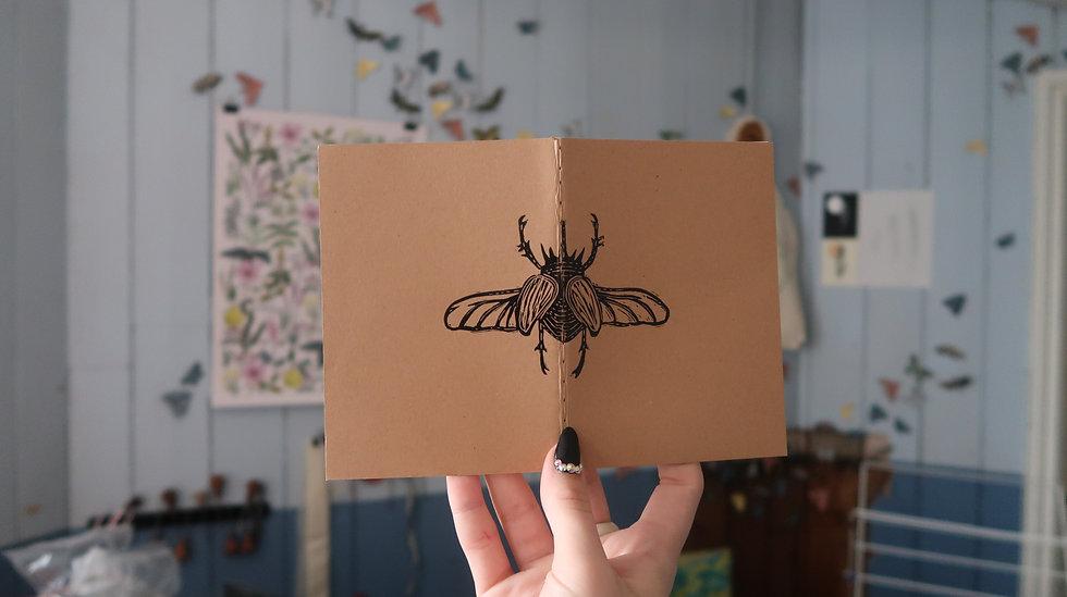 Lepidoptera Notebook - A6