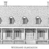 Woodland_Plantation.jpg