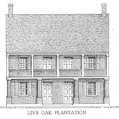 Live_Oak_Plantation.jpg