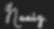 Naaiz logo