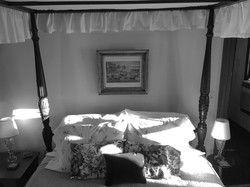 Golding Bed BW