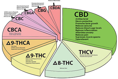 Cannabis Pie Chart - Benifits of Cannabi