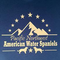american water spaniels