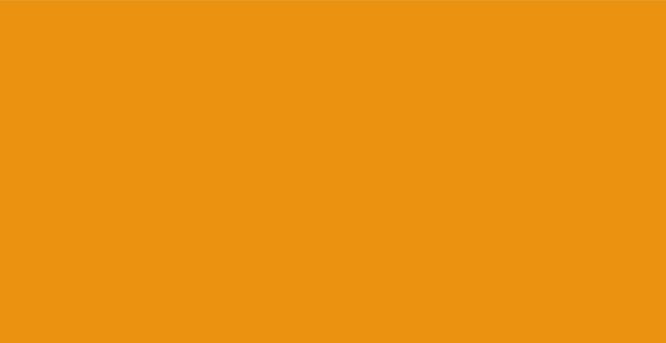 fondo_arancio.jpg