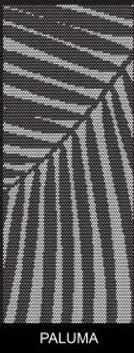 Paluma-Punch-800x2050 (1).jpg