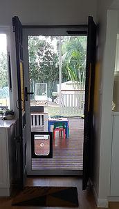 Pet door for a larger dog
