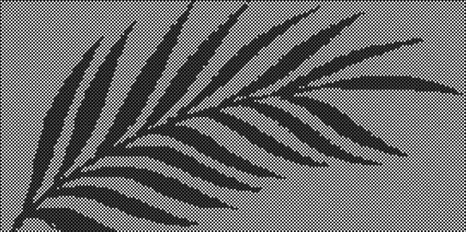 Palm-Frond Perforated