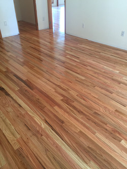 Oak Hardwood Refinish