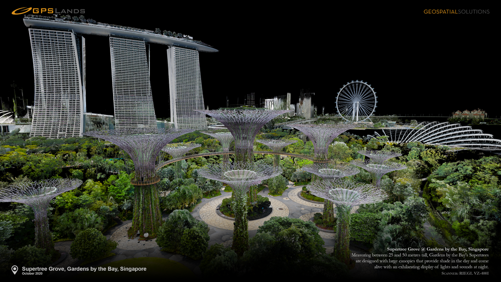 2020.10 - Supertree Grove, Gardens by th