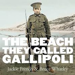 The beach they called Gallipoli