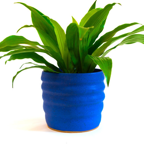 Wavy Planter